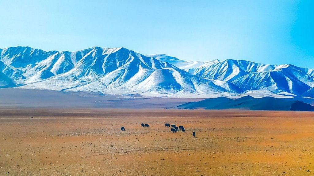 горный пейзаж по дороге, Монголия