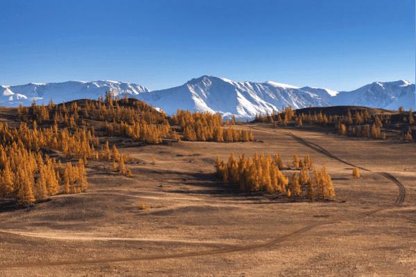 дорога к площадке с видом на Северо-Чуйский хребет