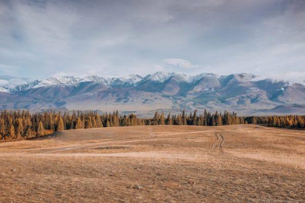 Курайская степь, вид на Северо-Чуйский хребет