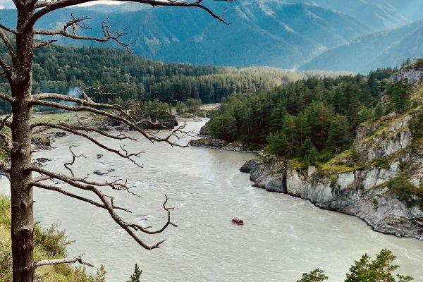 """река Катунь, вид с """"козьей"""" тропы"""