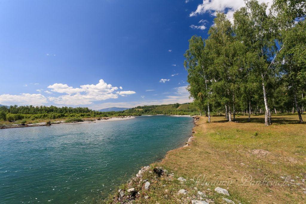 река Катунь, Усть-Кокса, фото - Владимир Панкевич